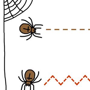 spinnenlijnen